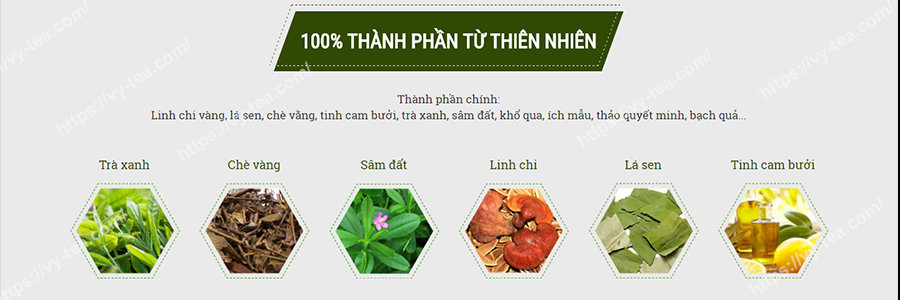 Thanh-phan-thao-duoc-trong-tra-giam-can-vy-and-tea-havyco